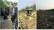 تجريف الأراضي الزراعية في جزيرة الوراق (فيسبوك)