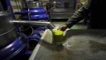 الزيت التونسي يكتسب شهرة عالمية (فرانس برس)