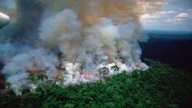 الحرائق تلتهم غابات الأمازون (تويتر)