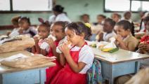 توزيع وجبات على طلاب مدارس اليمن (برنامج الأغذية العالمي)