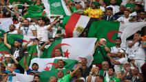 """جمهور الجزائر يحتفل حتى الفجر في القاهرة """"جايين نربحوها"""""""
