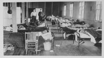 ضحايا الإنفلونزا