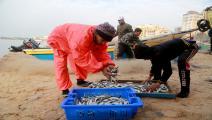 فلسطين/اقتصاد/الصيد في غزة/26-04-2016 (عبد الحكيم أبو رياش)