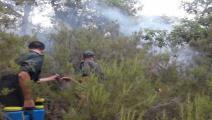 حرائق غابات الجزائر (انترنت)
