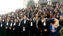 محامو وقضاة تونس