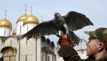 بوتين يستخدم الطيور الجارحة لمحاربة داعش