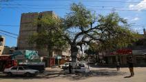 شجرة السدرة (عبد الحكيم أبو رياش)