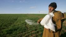 المغرب-الزراعة في المغرب-زراعة المغرب-10-1-فرانس برس