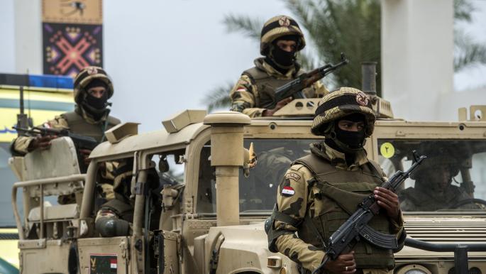 """الجيش المصري يعلن اكتشاف مزارع مخدرات """"الهيدرو"""" بشمال سيناء"""